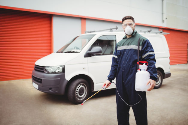 Pest Control Stirling